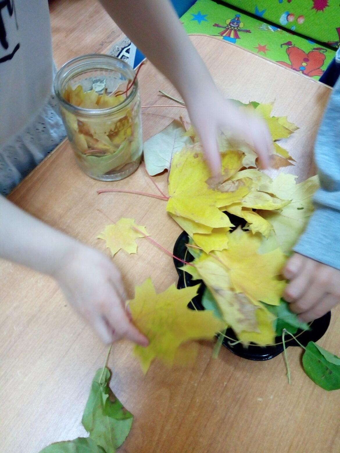 Почему желтеют листья, опыты в подготовительной группе.